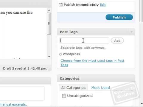 WordPress Tutorial – How To Write Posts For Your WordPress Blog