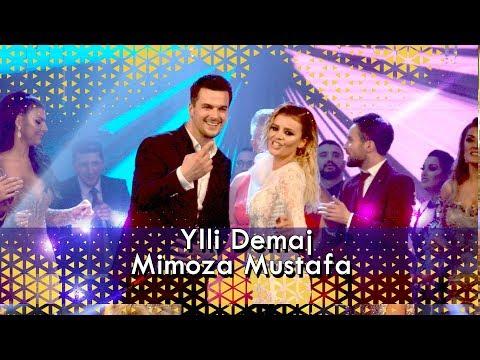 Ylli Demaj ft Mimoza Mustafa - Leze Leze