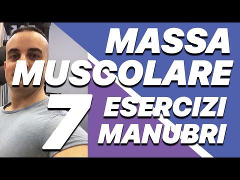 Aumentare Massa Muscolare: i 7 migliori esercizi con i manubri