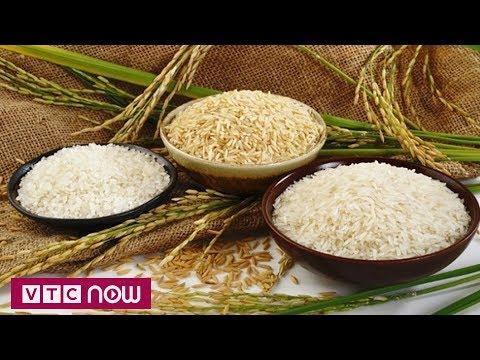 Phát hiện chất chống ung thư trong gạo | VTC1 - Thời lượng: 57 giây.