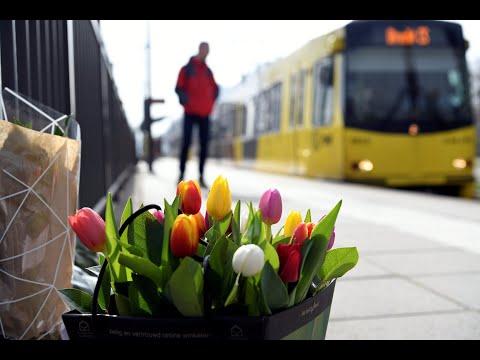 Niederlande: 3 Festnahmen in Utrecht - Rätsel um Motiv für tödliche Schüsse auf 3 Personen
