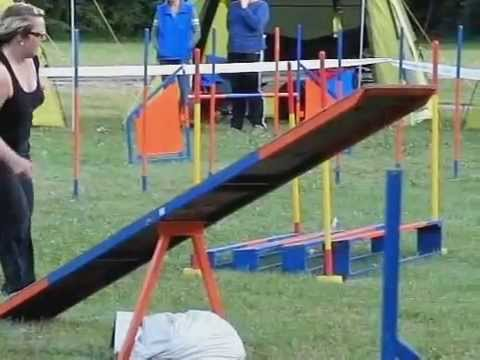 collie - International Border Collie Championship 2012 SLOW MOTION MOVIE by www.DogSports.cz 1.-3.6.2012 Strnice - Czech republic www.DogSports.cz www.DogSports.inf...