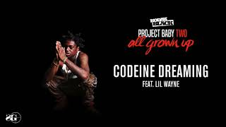 Video Kodak Black - Codeine Dreaming (feat. Lil Wayne) [Official Audio] MP3, 3GP, MP4, WEBM, AVI, FLV Agustus 2018