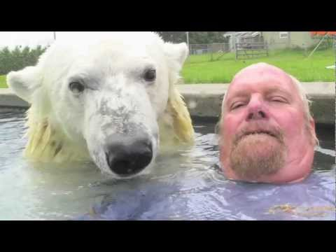 Man - The Only Man In The World Who Can Swim With A Polar Bear: Grizzly Man SUBSCRIBE: http://bit.ly/Oc61Hj Grizzly man Mark Dumas, 60, is the only man in the worl...