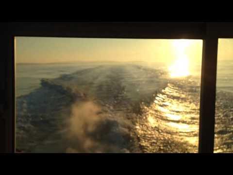 JEANNEAU MERRY FISHER 805 2008