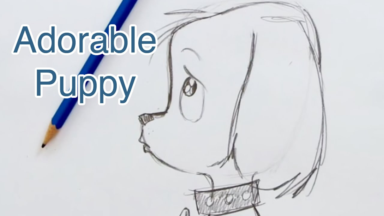 How To Draw A Super Cute Puppy (step By Step) #howtodraw #draw
