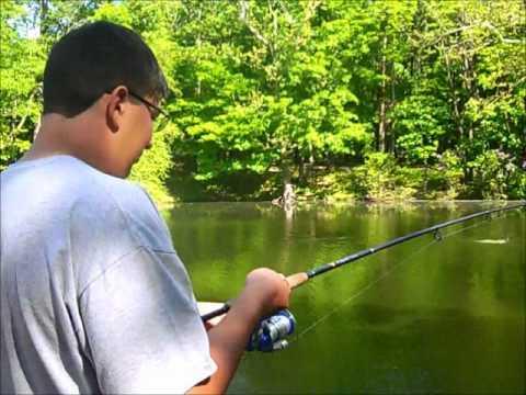 Gaedes Pond Fishing