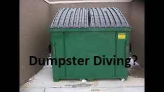Trash picking, trash digging, dumpster diving; there are lots of different names for it but it's still the same thing. Going through or taking stuff out of a dumpster or trash can. Sometimes to keep, sometimes to sell. Is it going to far though? Feel free to embed and link these videos on your blog or website, when you do please credit frugalGreenGirl. Thank You.