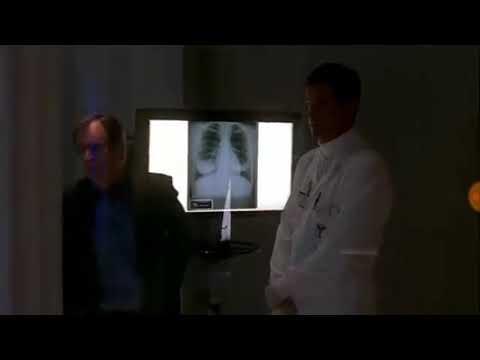 """NCIS """"SWAK"""" The Plague (Re-upload)"""