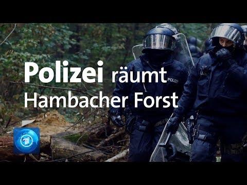 Hambacher Forst: Polizei beginnt Räumung