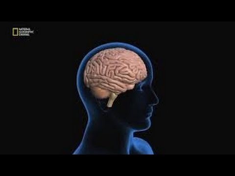 Наука будущего Стивена Хокинга: Люди на заказ (National Geographic)