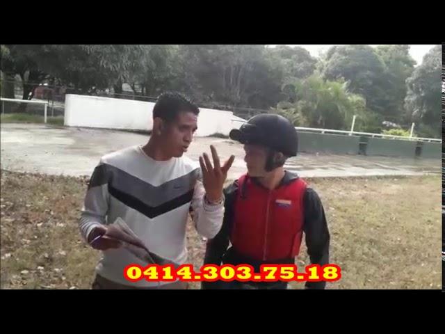EL ESCORPIÓN DEL HIPISMO 18 Y 19 ENERO 2020 LR