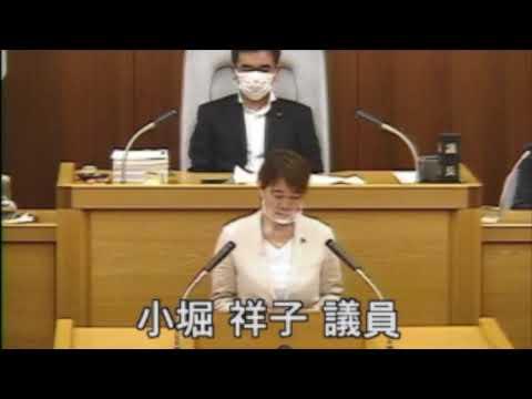 2020年第5回市議会での代表討論(先議)(動画)