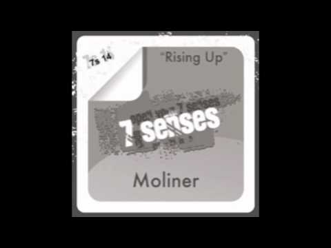 Moliner-Swimming Around (Original Mix)