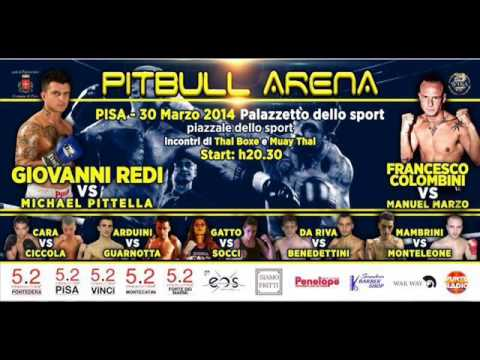 pitbull arena vs