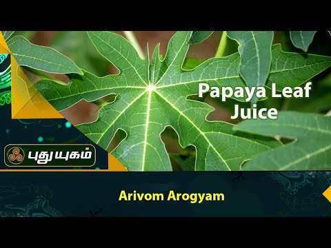 Papaya Leaf Juice | Pappali Ilai Saru Papaya Leaf Juice | A Surprising Natural Remedy for Fever