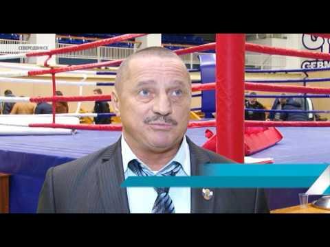 видеоотчеты с соревнований по боксу