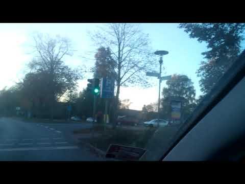 WildsauSEO: Fahren wie eine Wildsau (vom 06.09.2019)