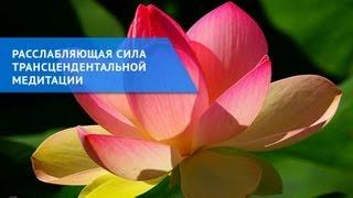 Расслабляющая сила трансцендентальной медитации