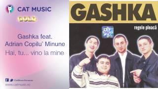 Gashka feat. Adrian Copilu' Minune - Hai, tu...vino la mine