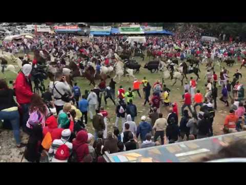 Vídeo de la salida de los toros de los corrales de Valonsadero (Mariló Val)