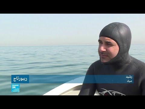 العرب اليوم - محاولات جمعية
