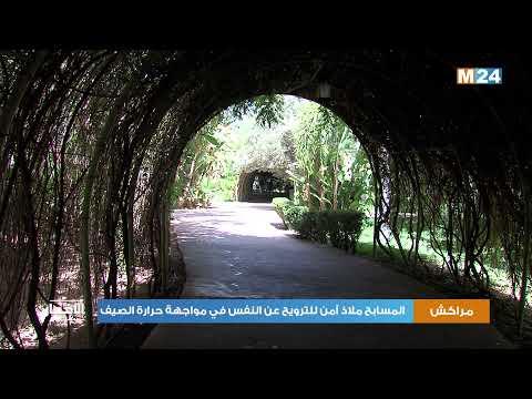 مراكش.. المسابح ملاذ آمن للترويح عن النفس في مواجهة حرارة الصيف