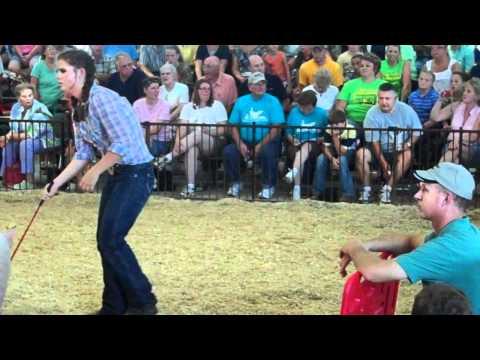 Seneca County Fair JF swine show