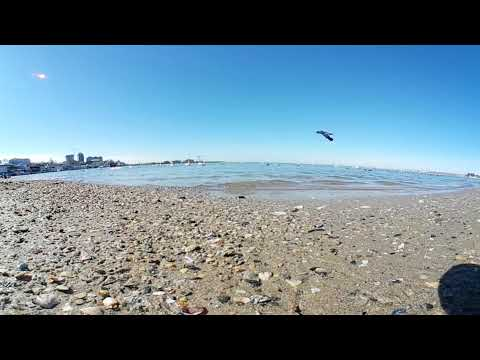 Анапа 360 - 4к. Центральный Пляж. Лебеди и голуби весна 2018