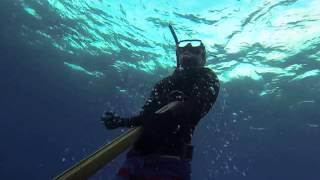 Jay's 1st Hawaii fish: A PRIZE!!!
