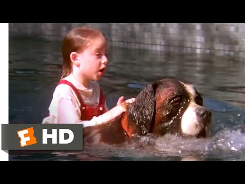 Beethoven (1992) - Drowning Rescue Scene (5/10) | Movieclips