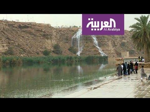 العرب اليوم - شاهد: أمطار رعدية متوسطة تغسل الرياض منذ فجر الأربعاء