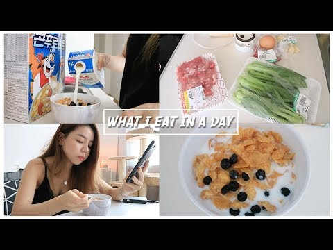 DAILY ROUTINE 🇰🇷 - WHAT I EAT IN A DAY | Erna Limdaugh