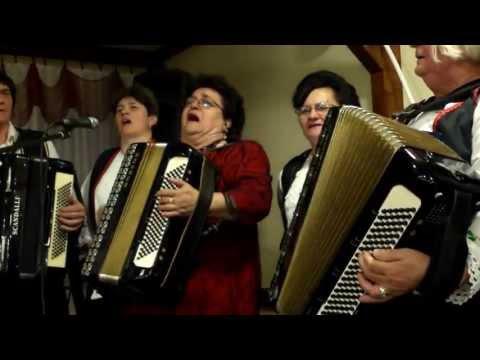 Banijsko veče u Beogradu 2013 - peva Sava Putnik uz pratnju svoga brata i grupe žena