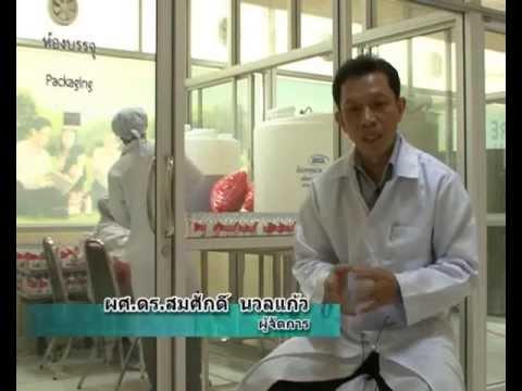 ตรีผลา - รายการ ตักสิลาวาไรตี้ ตอน น้ำตรีผลา (Tripala) จากยาไทยสู่เครื่องดื่มสุขภาพ ขอขอบคุณ :...