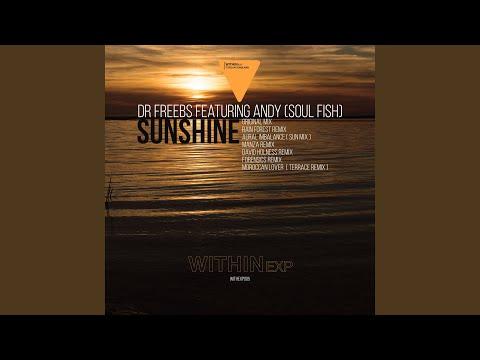 Sunshine (Dave Holness Remix)