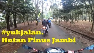 Video Sunmori 5.3.17 #sunmorijambi ke Hutan Pinus jambi MP3, 3GP, MP4, WEBM, AVI, FLV September 2018