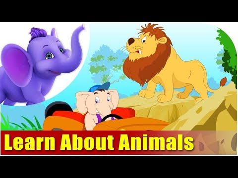 Learning - This video is designed for your child to watch and learn about Animals the FUN way... This is the best Animal teaching module, which have the following categ...