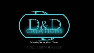 Promo video for the start up webinar animation masterclasses of D&d Creation.