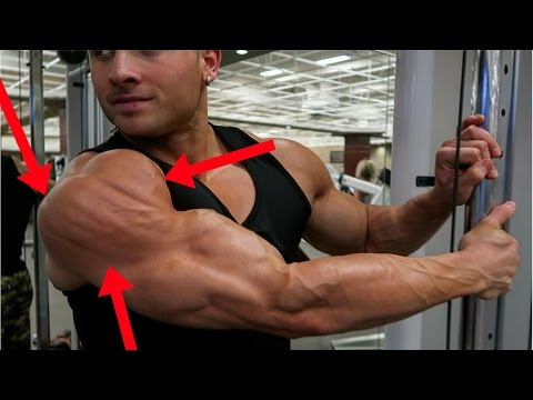 Complete SHOULDER WORKOUT - (ALL THREE HEADS!!)