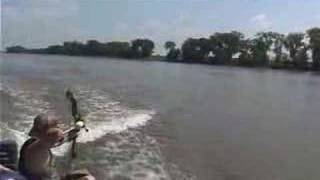 Bow Fishing Asian Carp