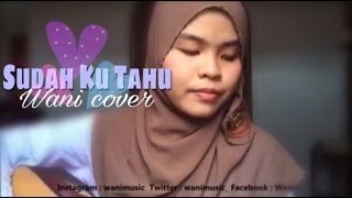 Projector - Sudah Ku Tahu ( Wani cover ) Video