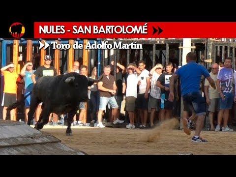 NULES - SAN BARTOLOMÉ 23/08/2017 / SALIDA DEL TORO Nº 34 DE ADOLFO MARTÍN