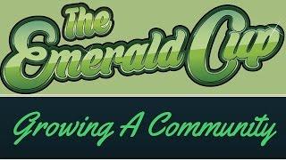 Here's a Big Grown-Up Cannabis Community by Marijuana Straight Talk