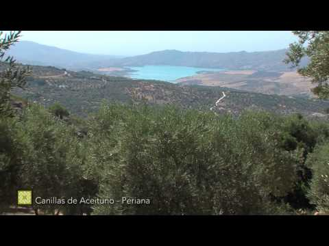 Gran Senda de Málaga. Etapa 8: Canillas de Aceituno-Periana