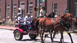 Waynesville (NC) United States  city photos : Horse Parade in Downtown Waynesville NC!