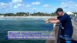 Dania (FL) United States  city images : FISHING IN DANIA BEACH PIER FLORIDA USA