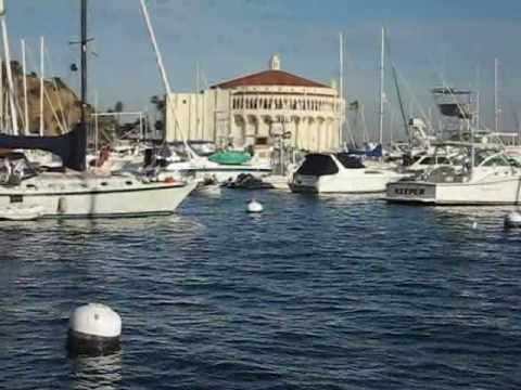 catalina - Sailing to Catalina Island. A 24 mile journey across open water infested with man-eating dolphins.