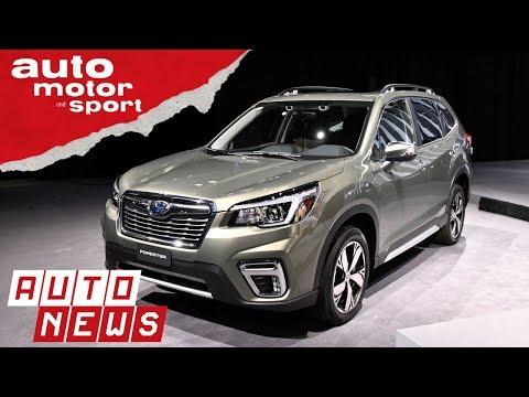 Subaru Forester (2018): Nippon-Förster neu aufgelegt -  ...