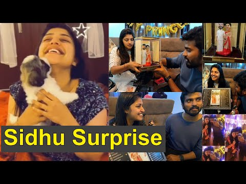 Sidhu's Birthday Surprise for Shreya Anchan | Thirumanam